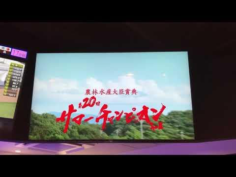 2020 佐賀 サマーチャンピオン サヴィ 和田竜二 @AIBA札幌駅前