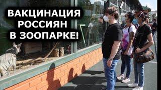 ЭТО НЕ ШУТКА! ВАКЦИНАЦИЯ РОССИЯН В ЗООПАРКЕ! НОВОСТИ ВАКЦИНАЦИИ В РФ