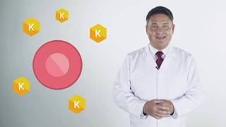 PentoKan   the key to cellular health