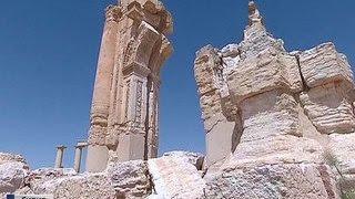 Ахмад Диб: Пальмиру взрывали по наводке