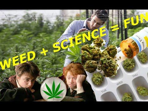 Medical marijuana: Know a lot about your pot!