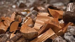 Какие дрова выбрать для шашлыка? Какие дрова лучше для шашлыка?