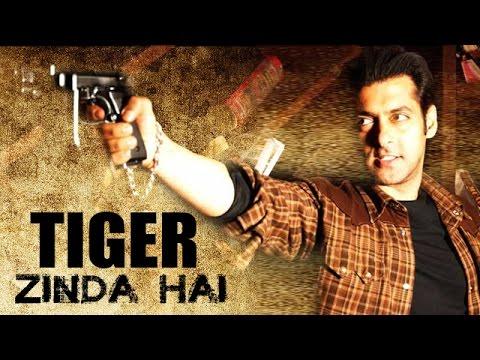 after tubelight tiger zinda hai will be salman s next movie bollywood news