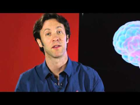 Your Brain is You: The Brain and Education (Part 6 of 6)