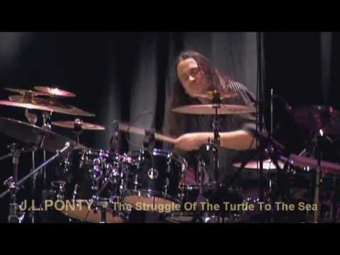 J.L. PONTY - THE STRUGGLE OF THE TURTLE TO THE SEA - LIVE