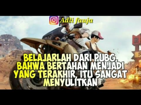 quotes baper versi pubg mobile