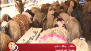 فيديو| التموين: طرح لحوم بـ50 جنيها في العيد