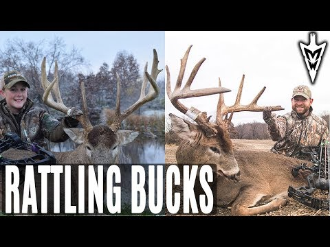 Rattling In Two Giants | Midwest Whitetail