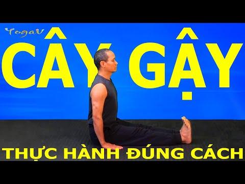 YogaVB 3: How to do Staff pose (Stick pose) _ DANDASANA _ Basic Yoga