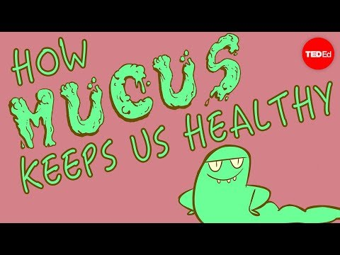 "TEDEd ""How mucus keeps you healthy"","