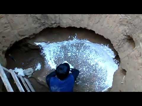 Hallaron un gliptodonte en Mar del Plata. Sierra de Los Padres