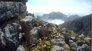 Hiking Day Cape Town - Kapstadt