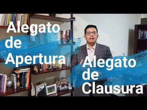 Alegato De Apertura Y Clausura