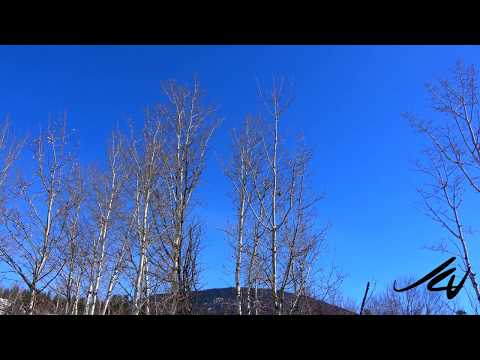 Beautiful Sunny Day -  Man Made Climate Change  Hoax - YouTube