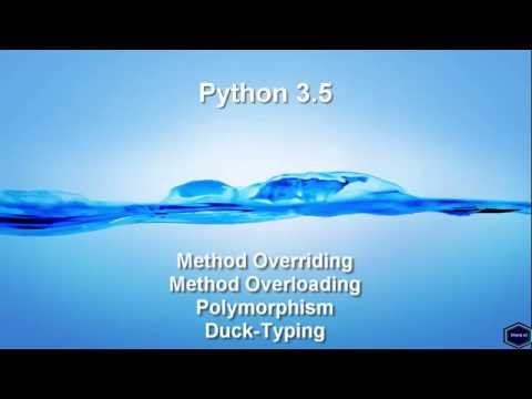 Method Overriding, Method Overloading, Polymorphism and Duck-Typing.