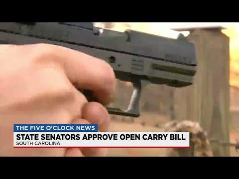 South Carolina Senate approves the open carry bill