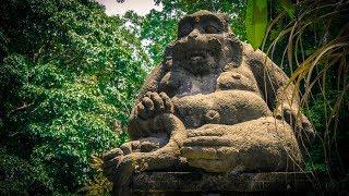 Bali! Amazing Ubud and Monkey Forest in 4K.