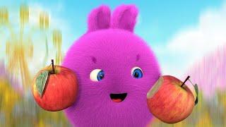 Sunny Bunnies | SUNNY BUNNIES - 맛있는 과일 | 어린이를위한 재미있는 만화 | WildBrain