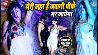 Gambar cover मेरी जहर है जवानी पीके मर जायेगा | Antra Singh Priyanka का सुपरहिट गाना | Vicky Raja | Bhojpuri Song