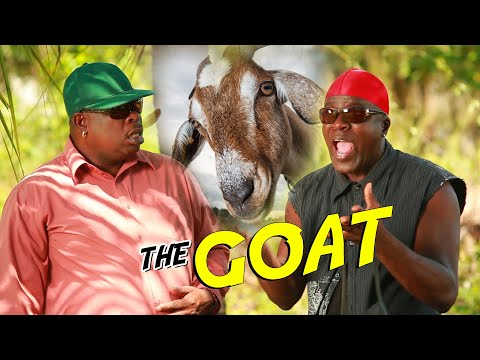 The GOAT  Comedy  Ity and Fancy Cat Show