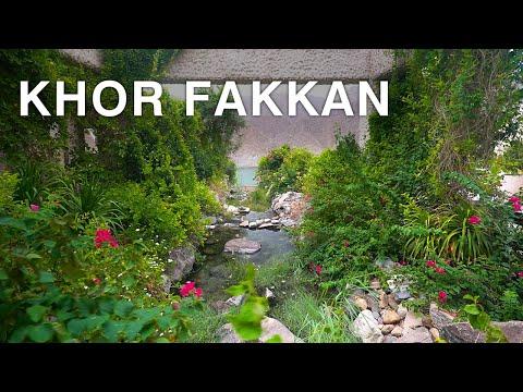 The Hidden Paradise of UAE - Hiking in Khor Fakkan