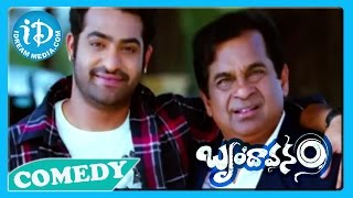 Brindavanam Movie Back2Back Comedy Scenes - Jr NTR - Samanatha - Kajal