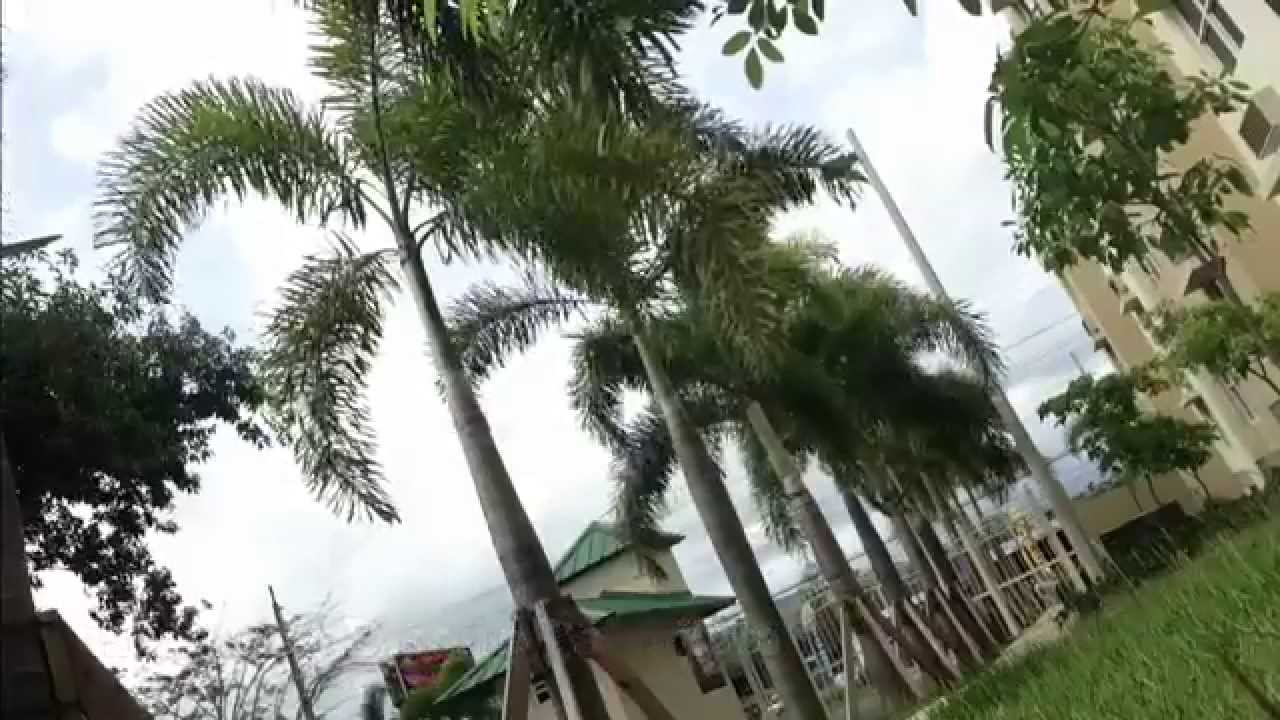 river oak villas - canóvanas, puerto rico - youtube