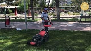 Park ve Bahçeler Müdürlüğü Atatürk Parkı
