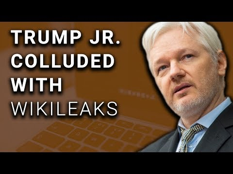 Bombshell Leaks Expose Trump Jr Contact with Wikileaks