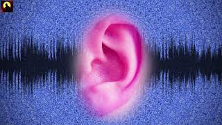 Cure All Ear Conditions : Ear Healing & Treatment Binaural Beats Session | Healing Frequency