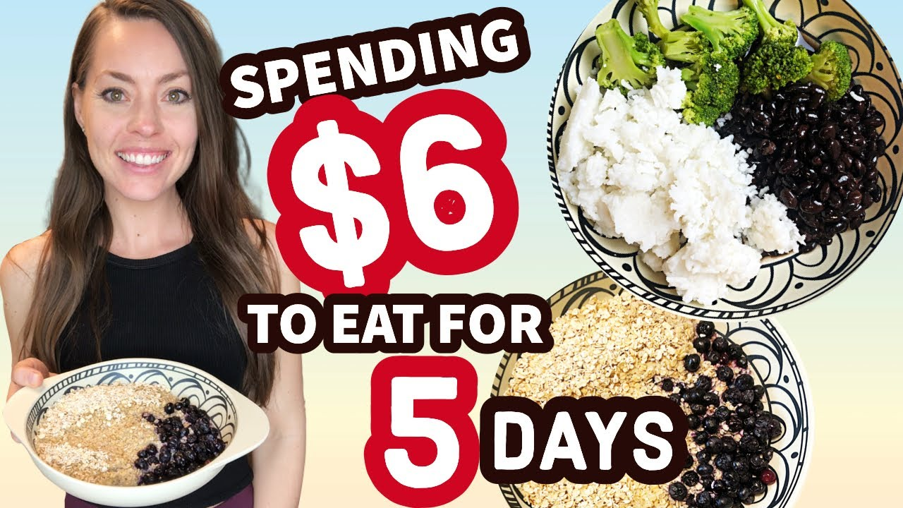 EATING FOR 5 DAYS ON $6   15 Meals for $6   Extreme Emergency Budget Meal Ideas