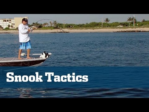 Snook Fishing Tackle And Techniques For South Florida Inlets - Florida Sport Fishing TV