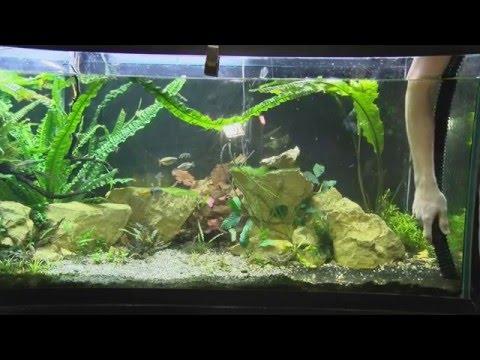 How To Remove Fish Tank Gravel, Aquarium Gravel Cleaning Options