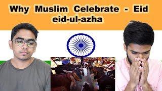 Indian reaction on Why Muslim Celebrate EID | eid-ul-azha | Swaggy d