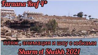 Пляж отеля Faraana Reef 4 анимация и шоу с юбками