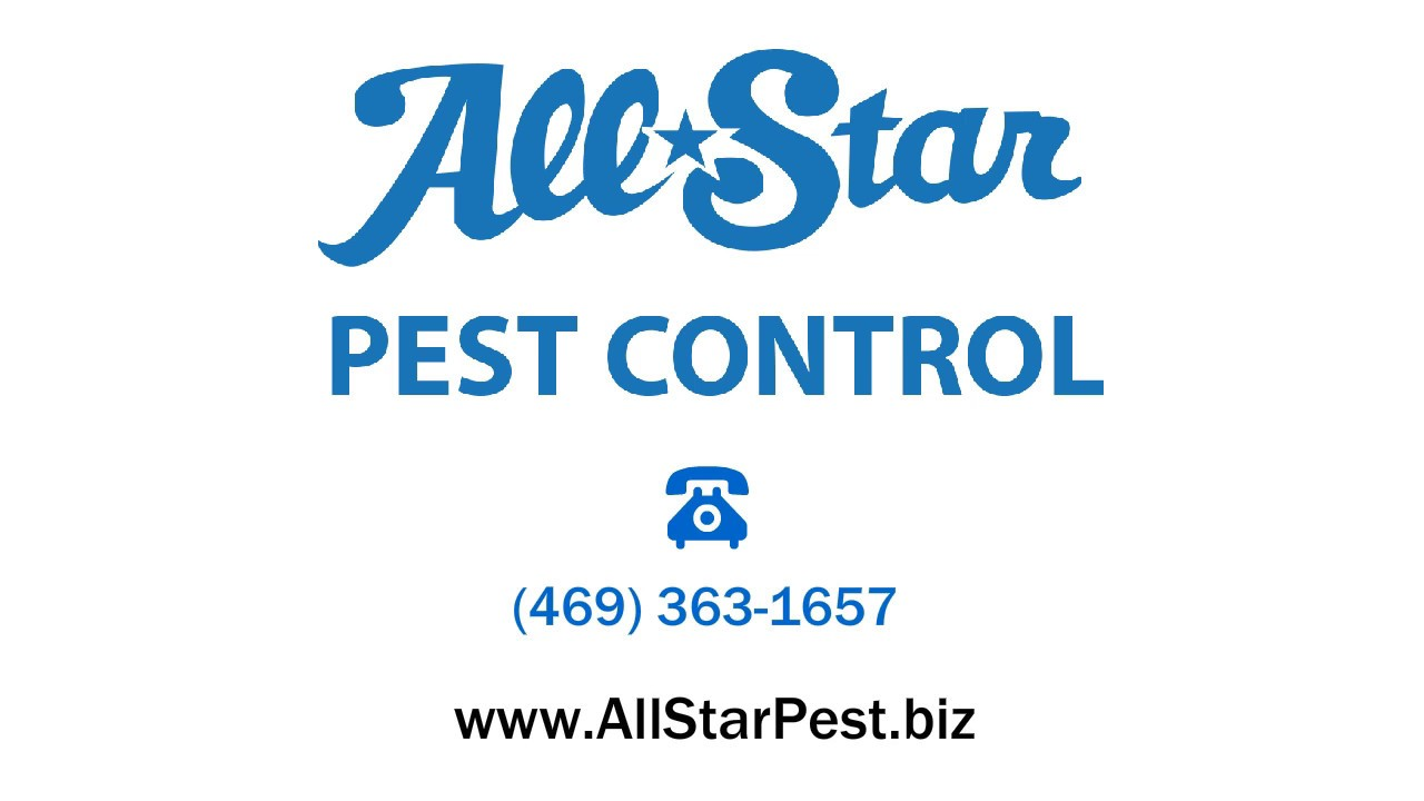 All Star Pest Control Youtube