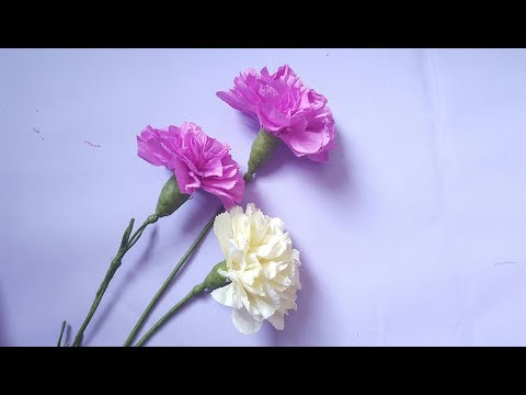 DIY - How to make Paper Carnations flowers from crepe paper - Hoa cẩm chướng giấy nhún