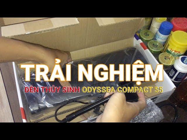 Trải nghiệm đèn thủy sinh Odyssea 40-60cm Compact 55