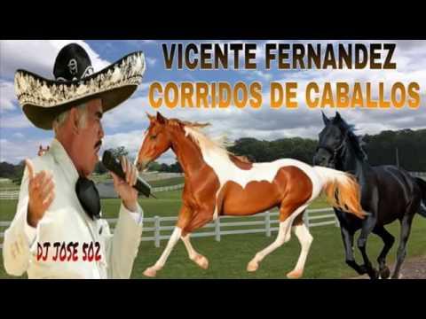 Vicente Fernandez Mix 2017 Corridos De Caballos Mix 2017