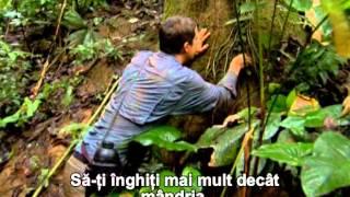 Tehnici esentiale de supravietuire Panama RO 1 min 05 sec