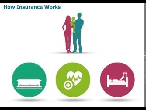 E-learning Explainer Video sample- How Insurance Works
