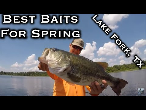 Lake Fork Spring Bass Fishing 2020 Tips And Techniques: Top 5 Baits