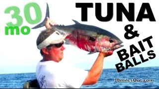 30milesOut.com- KAYAK FISHING TUNA, BAIT BALL ! ft. pickens florida, how to