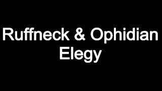 Ruffneck & Ophidian - Elegy (Nothing Can Last Forever) (Gancher & Ruin Tainted Audio VIP)