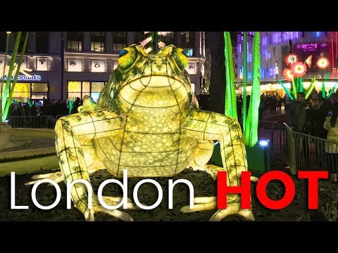 """Lumiere London 2018 Leicester Square """"Nightlife"""" bringing the wild into the city"""