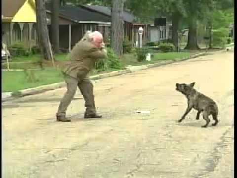 SHOCKING Dog Attack Brave Guy Fights Vicious Dog - YouTube