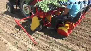 AGROMAX - Sadzarka kubeczkowa AGROSA do rozsady z multiplatów