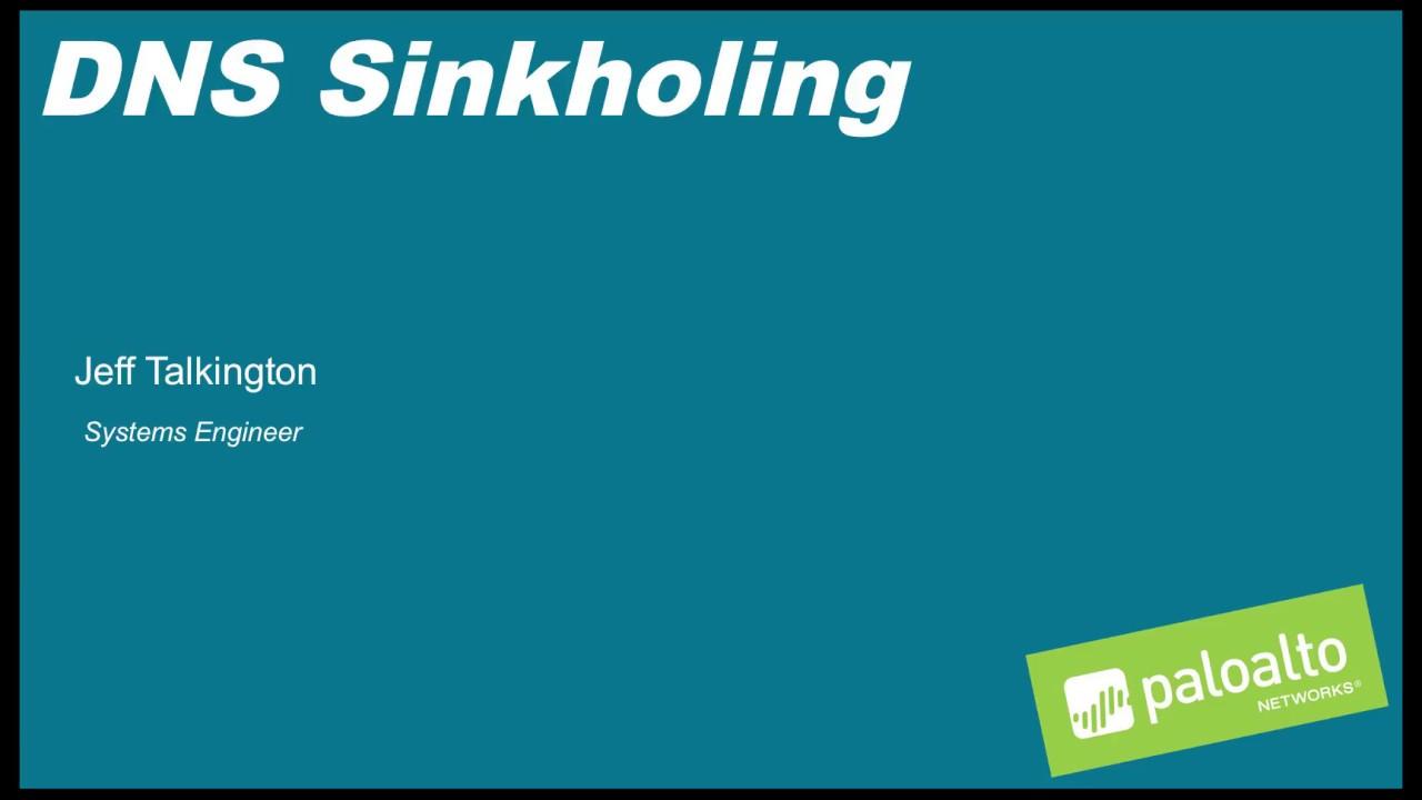 Palo Alto Networks- DNS Sinkhole