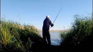 Рыбалка на фидер Ловля подлещика на водохранилище