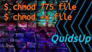 Linux Terminal Basics: chmod - File Permissions